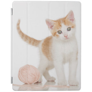 Kitten Next To Ball Of String iPad Cover