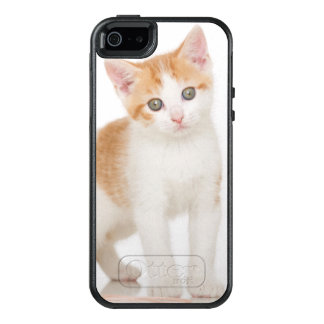 Kitten Next To Ball Of String OtterBox iPhone 5/5s/SE Case