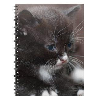 Kitten Notepad Spiral Notebook