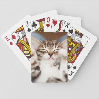 Kitten on lap. playing cards
