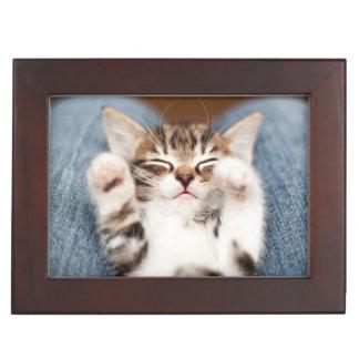 Kitten On My Lap Keepsake Box