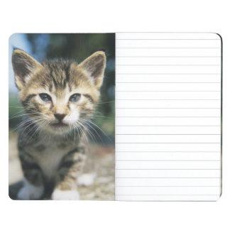 Kitten outdoors journal