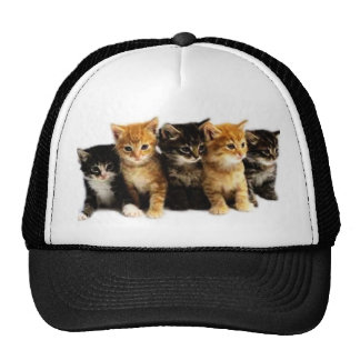 Kitten Outfits Cap