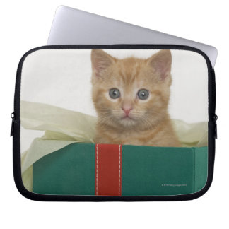 Kitten peeking out of gift box laptop sleeve