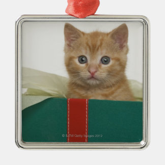 Kitten peeking out of gift box Silver-Colored square decoration