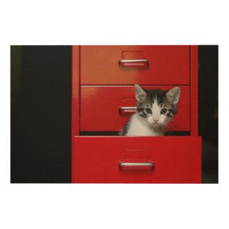 Kitten Peeking Wood Wall Decor