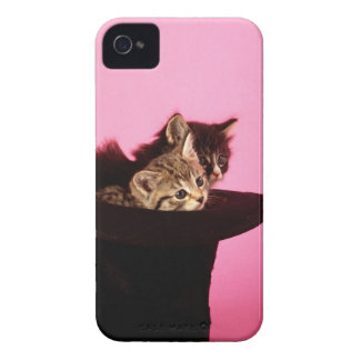 Kitten peeping out of hat Case-Mate iPhone 4 case