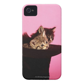 Kitten peeping out of hat Case-Mate iPhone 4 cases