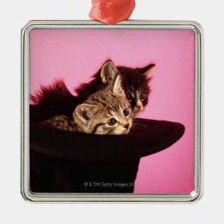 Kitten peeping out of hat christmas ornament