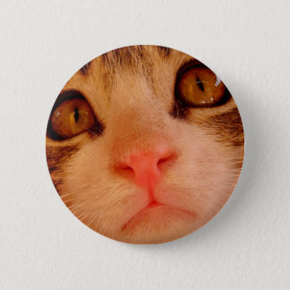 Kitten pin. 6 cm round badge