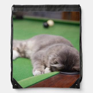Kitten playing on pool table. rucksacks
