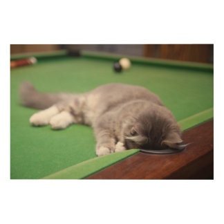 Kitten playing on pool table. wood print