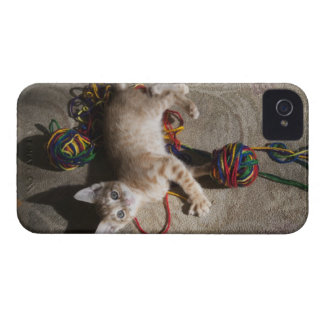 Kitten Playing With Yarn iPhone 4 Case-Mate Case