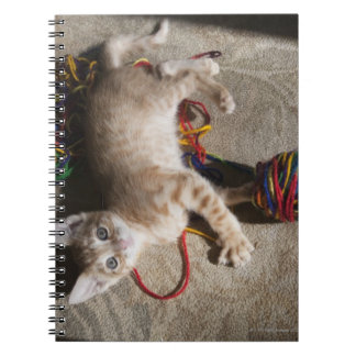 Kitten Playing With Yarn Notebooks