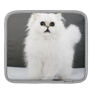 Kitten Portrait iPad Sleeve