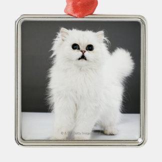 Kitten Portrait Silver-Colored Square Decoration