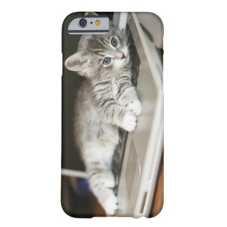 Kitten resting on laptop computer barely there iPhone 6 case