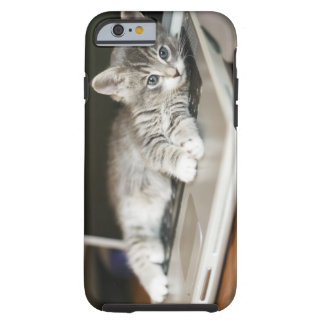 Kitten resting on laptop computer tough iPhone 6 case