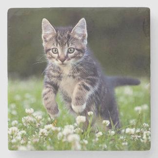 Kitten Running Through Clover Stone Coaster