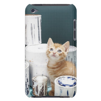 Kitten sitting amongst paint tins barely there iPod covers