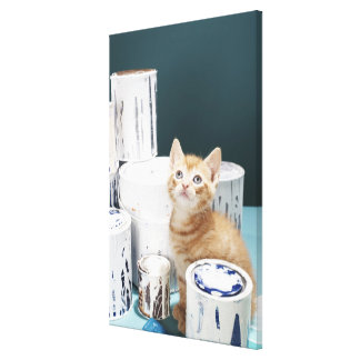 Kitten sitting amongst paint tins canvas print