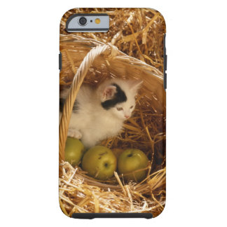 Kitten sitting in basket with fruits, elevated tough iPhone 6 case
