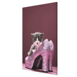 Kitten sitting in glitter shoes canvas print