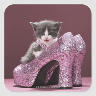 Kitten sitting in glitter shoes square sticker