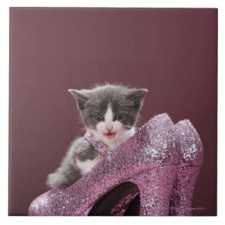 Kitten sitting in glitter shoes tile