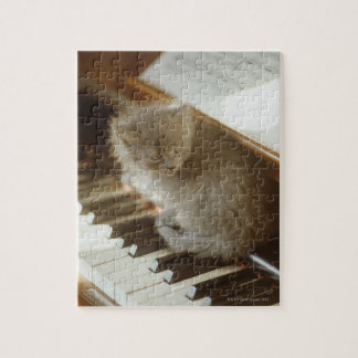 Kitten sitting on piano keyboard, close-up jigsaw puzzle