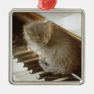 Kitten sitting on piano keyboard, close-up Silver-Colored square decoration