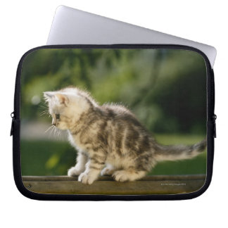 Kitten sitting on top of bench, side view laptop sleeve