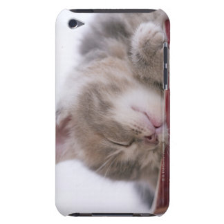 Kitten Sleeping in Bowl 2 Barely There iPod Case