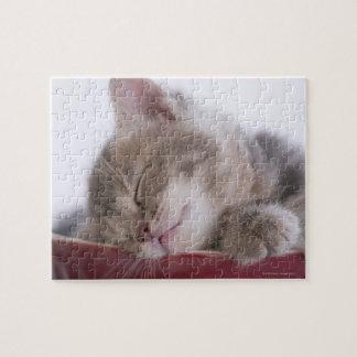 Kitten Sleeping in Bowl 2 Jigsaw Puzzle