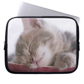 Kitten Sleeping in Bowl 2 Laptop Sleeve
