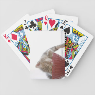Kitten Sleeping in Bowl Bicycle Playing Cards