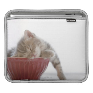 Kitten Sleeping in Bowl iPad Sleeve
