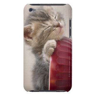 Kitten Sleeping in Bowl iPod Case-Mate Cases
