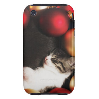 Kitten sleeping in decorations iPhone 3 tough covers