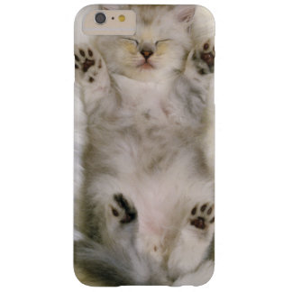 Kitten Sleeping on a White Fluffy Carpet, High Barely There iPhone 6 Plus Case
