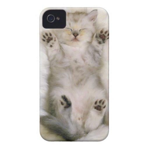 Kitten Sleeping on a White Fluffy Carpet, High Case-Mate iPhone 4 Cases