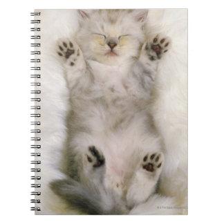Kitten Sleeping on a White Fluffy Carpet, High Spiral Notebook