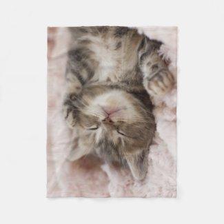 Kitten Sleeping On Towel