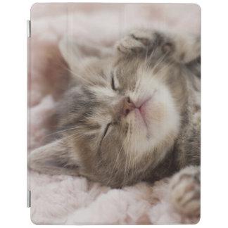 Kitten Sleeping On Towel iPad Cover