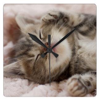 Kitten Sleeping On Towel Square Wall Clock