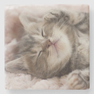 Kitten Sleeping On Towel Stone Beverage Coaster