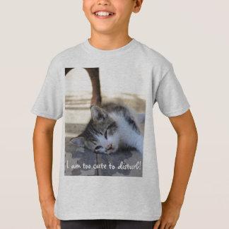 kitten sleeping tee shirt