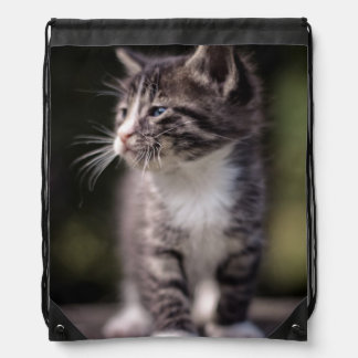 Kitten standing and squinting drawstring bag