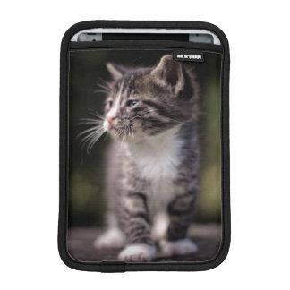 Kitten standing and squinting iPad mini sleeve