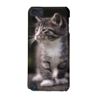 Kitten standing and squinting iPod touch (5th generation) cover